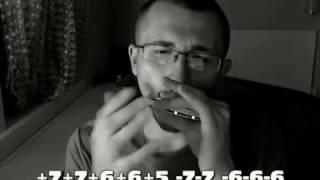 Гудбай, Америка / Прощальное письмо (Наутилус Помпилиус) табы для губной гармошки