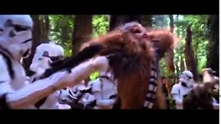 eclectic method chewie tune 10 hrs extreme