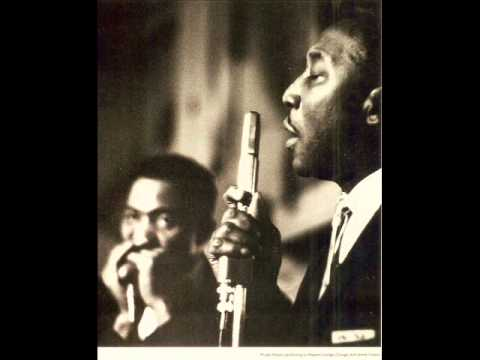 Muddy Waters (Live 1958) - Rollin