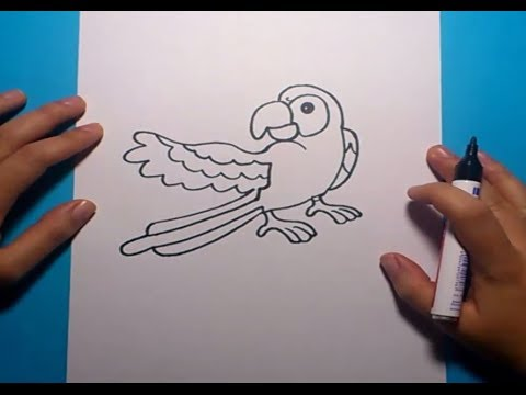 Como dibujar un loro paso a paso  How to draw a parrot  YouTube