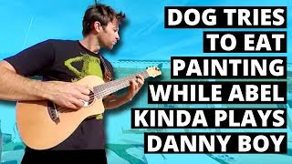 Dog tries to eat painting while Abel kinda plays Danny Boy (360 Music Video)