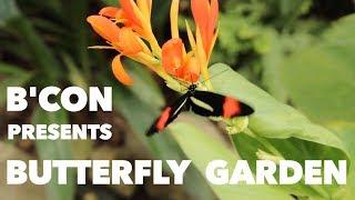 People in Calicut For Butterflies | B'CON Calicut | 2018