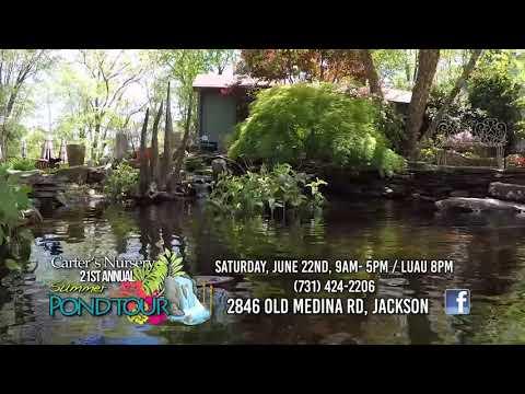 Summer Pond & Garden Tour