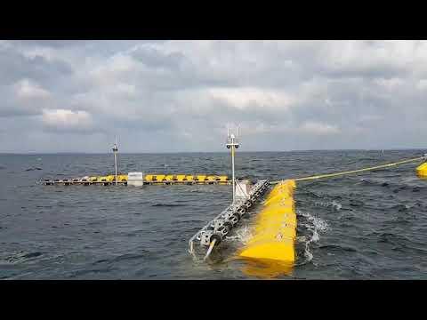 Weptos Offshore #1