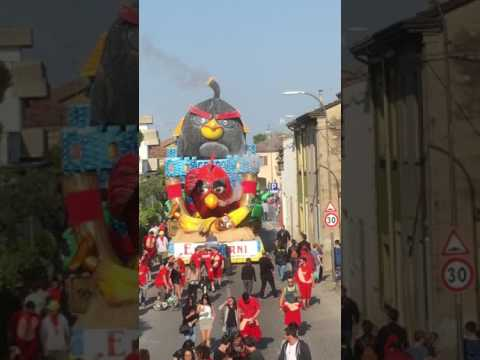 Carnevale di Gambettola 2017 - Angry Birds (2)