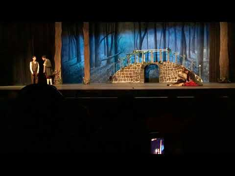 Into the Woods 'No one is alone'- Half Hollow Hills High School East