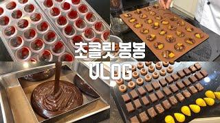 수제 초콜릿 만드는 브이로그: 초콜릿 봉봉 만들기: H…