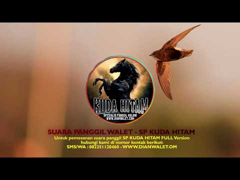 Suara Walet Premium - SP KUDA HITAM ~ DIAN WALET