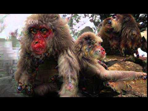 Snow Monkeys, Deep Dream