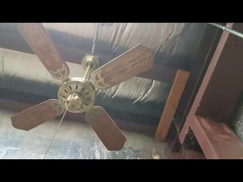 Regency Ceiling Fan Doovi