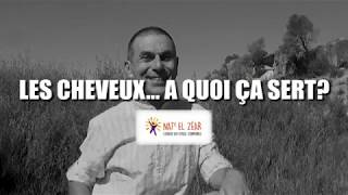 Скачать Les Cheveux à Quoi ça Sert