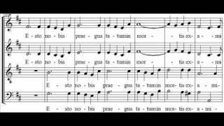 Mozart - Ave verum corpus - Vienna boys choir.flv