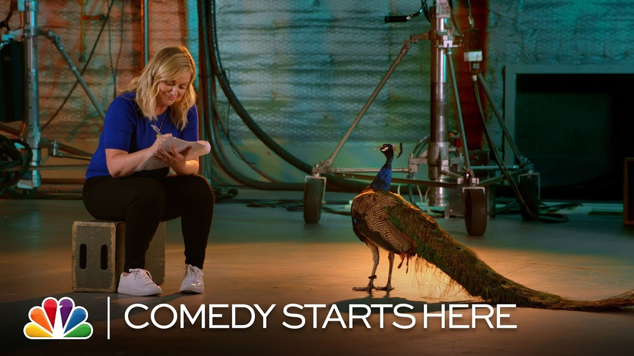 Peacock Knows Comedy