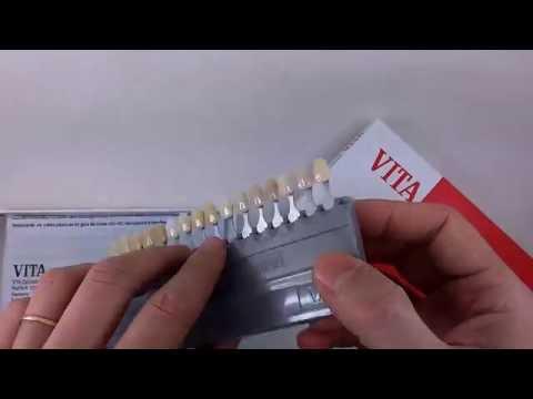 Escala De Cores Vitapan Clássica Vita
