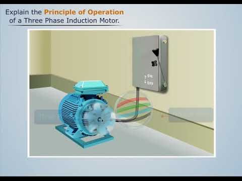 Working Principal of Three Phase Induction Motor - Magic Mar
