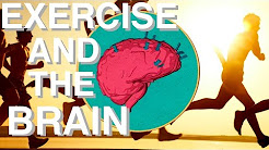 hqdefault - Effects Of Exercise On The Brain And Depression