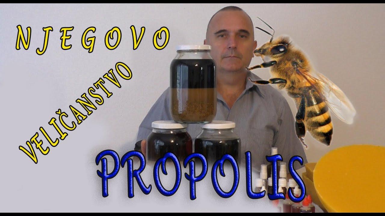propolis kezelés a prosztatitis alatt