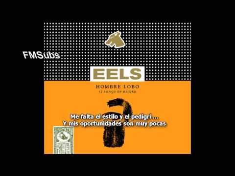 Eels - That Look You Give That Guy (Subtitulado Español) (HD)