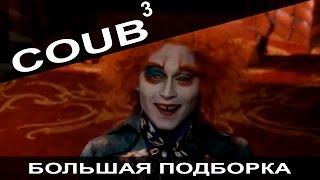 Большая подборка приколов COUB за январь 2016.