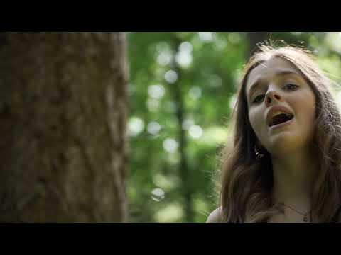 James Arthur - Falling Like The Stars (Cover By Eske)