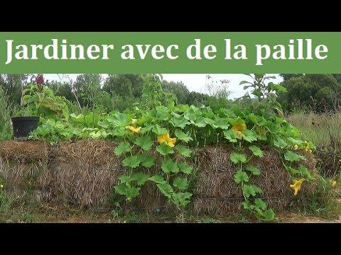 Jardiner avec de la paille youtube - Culture sur botte de paille ...