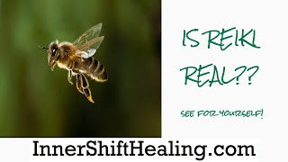 Un-BEE-lievable footage of Reiki in Action