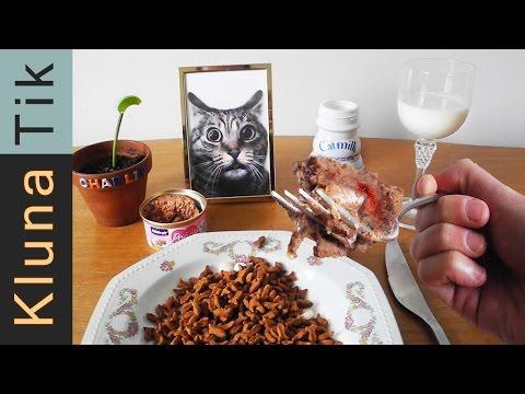 Eating CAT FOOD!!! Kluna Tik Dinner #58 | ASMR eating sounds no talk klunatik