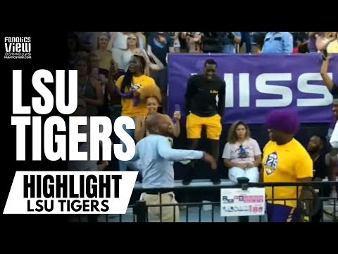 LSU Fans Chant