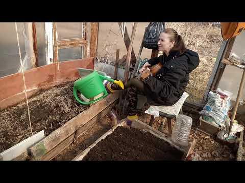 Посев капусты и свеклы на рассаду! Огородные будни!