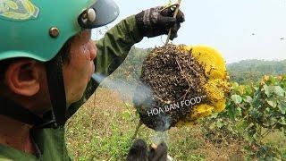 ĐI SĂN ONG RUỒI - Wild Honey Hunters
