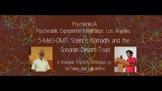 5-MeO-DMT: Science, Samadhi and the Sonoran Desert Toad
