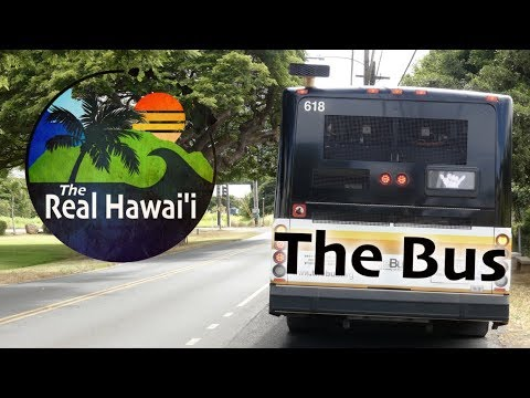 The Real Hawaii: The Bus