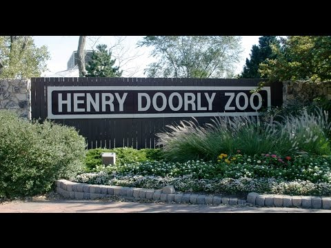 A Peek Inside Omaha's Henry Doorly Zoo (2016)