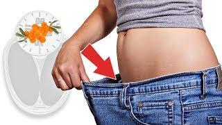 Эти ягоды помогут в миг избавиться от жира! Как быстро похудеть с помощью облепихи?  Как похудеть?