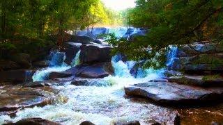 Relaxing Piano Music & Nature Scenes
