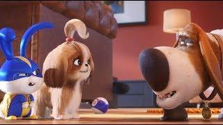 Тайная жизнь домашних животных 2 - Трейлер #5 (2019)