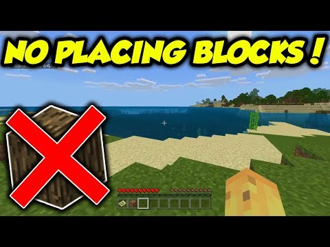 TESTED: Is It Possible To Beat Minecraft Without Placing Blocks?