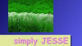 SIMPLY JESSE/REX SMITH/KARAOKE
