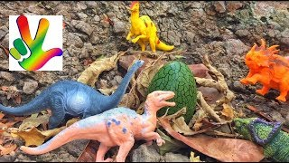 Пляж динозавров. Война динозавров и тараканов, таинственные морские жители
