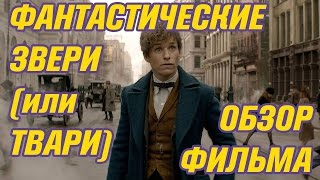 Фантастические твари - ОБЗОР фильма