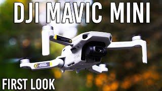 DJI Mavic Mini Drone - Specs & Footage   First Look