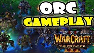 Warcraft 3 Reforged Beta Orc Gameplay Video
