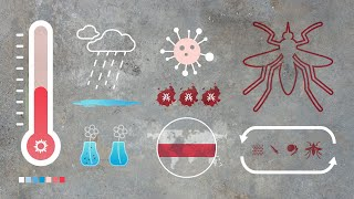 Climate change and dengue, what is the link?