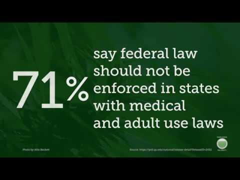 Americans Want Trump To Respect Marijuana Laws