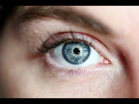 How Did Blue Eyes Evolve?