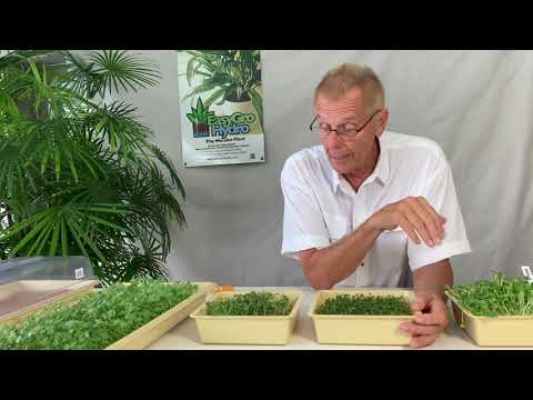 Beginners Guide to Growing Microgreens