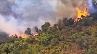 Le Massif des Maures face aux incendies