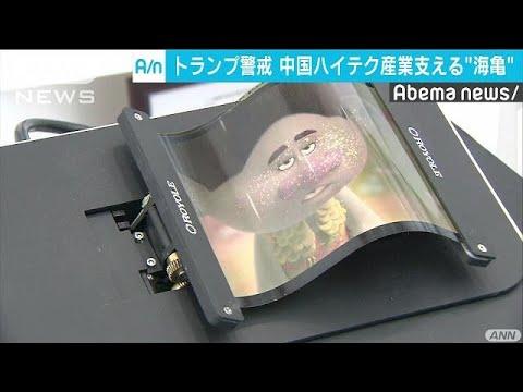 米が警戒!中国ハイテク産業支える「海亀」とは?(19/02/01)
