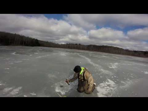 Ice Fishing On Lake Myosotis Catching Perch And A Bullhead