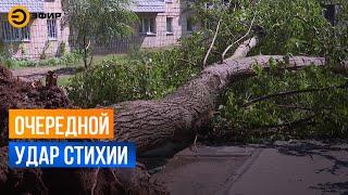 Ураганный ветер и ливень прошлись по Казани